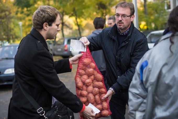 Idén is népszerű volt a kerületi krumplivásár