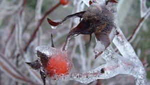 Jéghelyzet