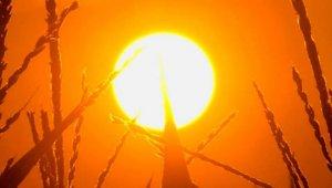 Fokozódik a kánikula – itt a hőségriadó